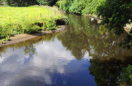Just 2 minutes walk from the Blacksmiths Arms is this lovely spot on the River Don in Millhouse Green